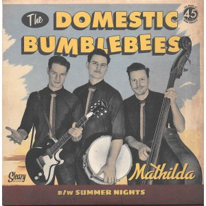 http://www.rocking-all-life-long.com/3088-7149-thickbox/the-domestic-bumblebees.jpg