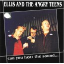 Ellis And The Angry Teens