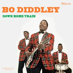 http://www.rocking-all-life-long.com/3504-8041-thickbox/bo-diddley.jpg