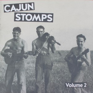 http://www.rocking-all-life-long.com/3566-8161-thickbox/cajun-stomps-vol2-various.jpg