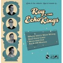 Roy & The Echo King